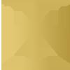 ACT-logo-100px